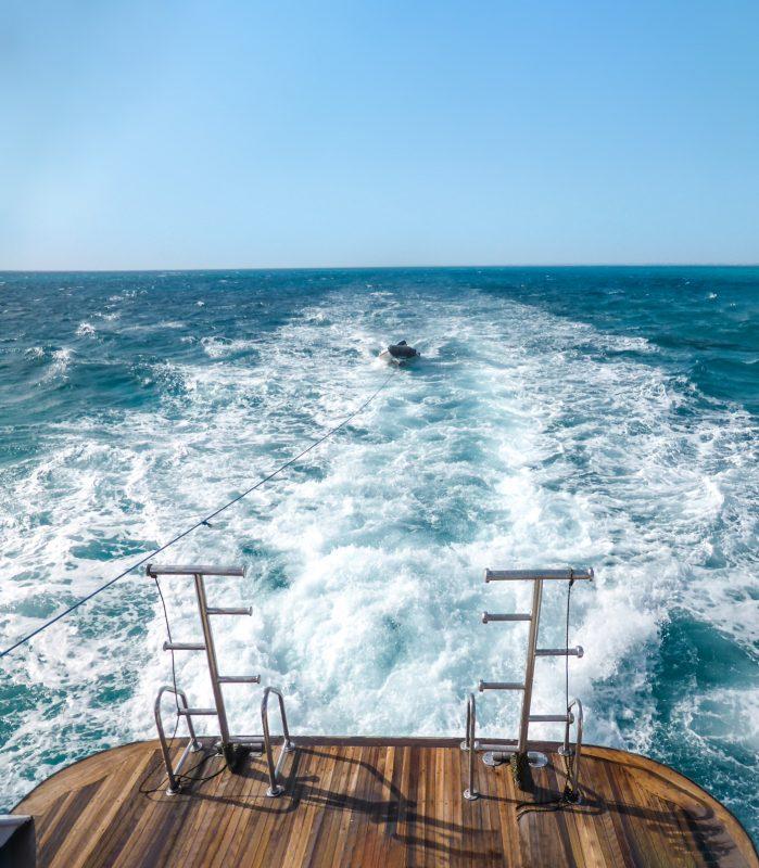 Tierarztpraxis Dr K Wontorra - Seminar am Meer- Boot
