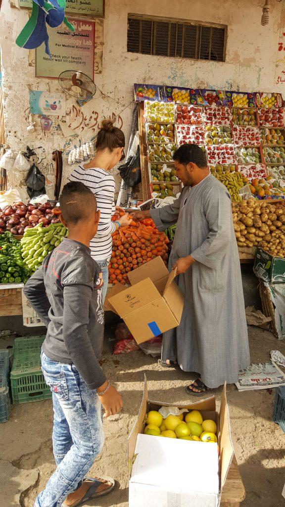 Seminar Ägypten -Sonstige Hilfe