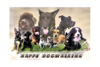 Tierarztpraxis Dr Katrin Wontorra - Partner - Happy Dogwalking