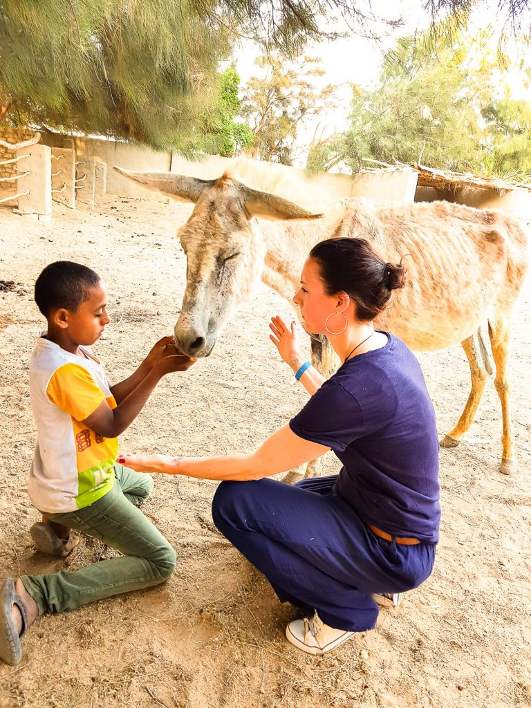 Tierarztpraxis Katrin Wontorra - Seminar Ägypten