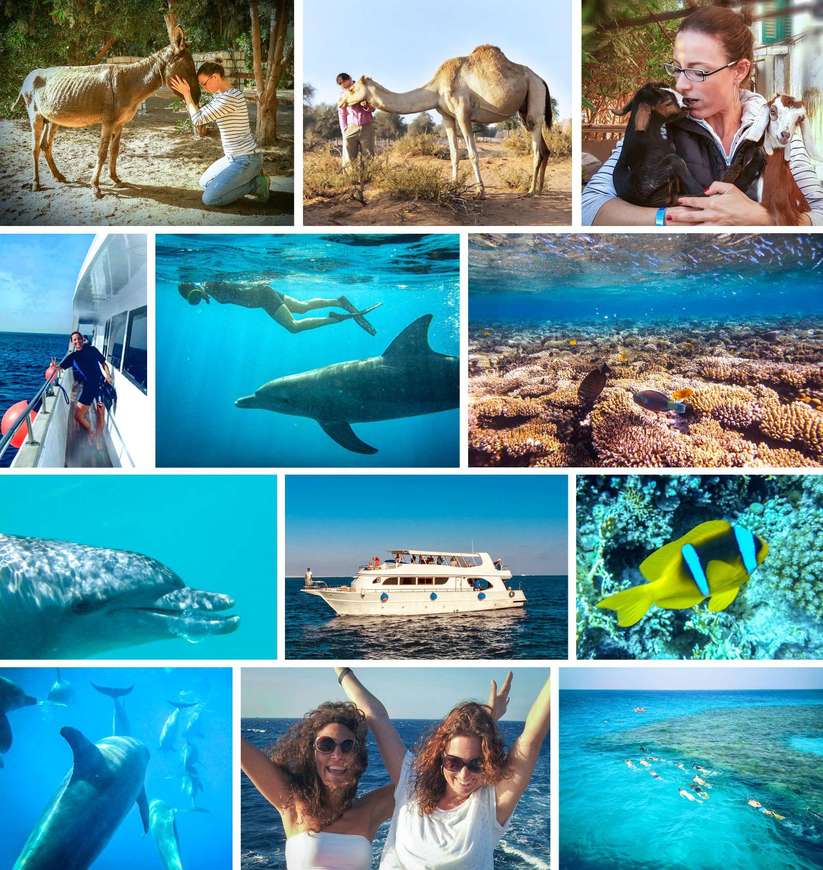 Seminare im Ausland Collage Erlebnisseminar am Meer