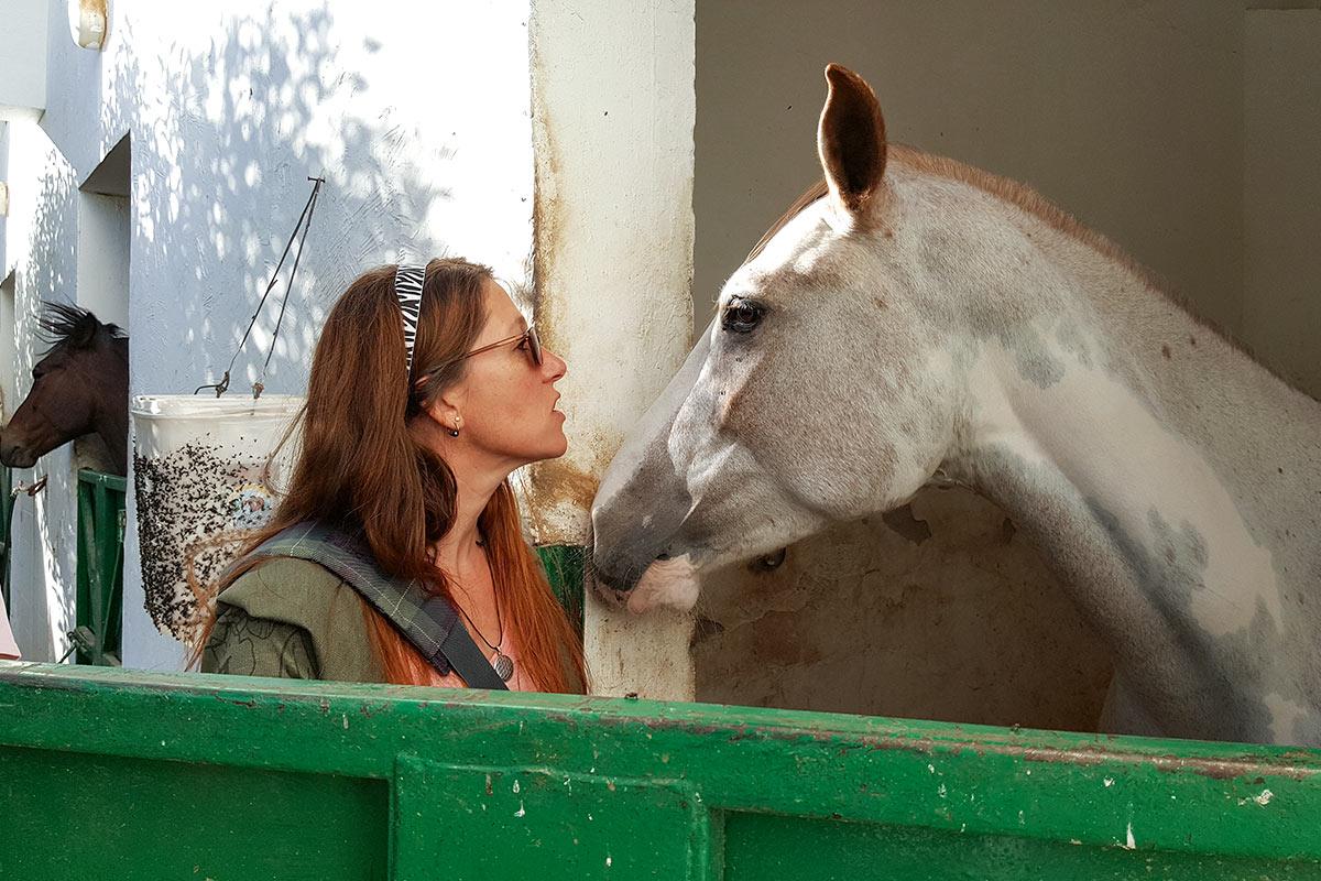 Feedback Seminar Aegypten Tierarzt Dr Wontorra Catherine mit Pferd